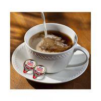 Salted Caramel Chocolate Nestle Coffee-mate Creamer
