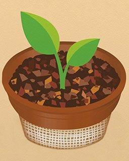 Hills Bros. Coffee Pods |  Morning Roast Single Serve Coffee Pods